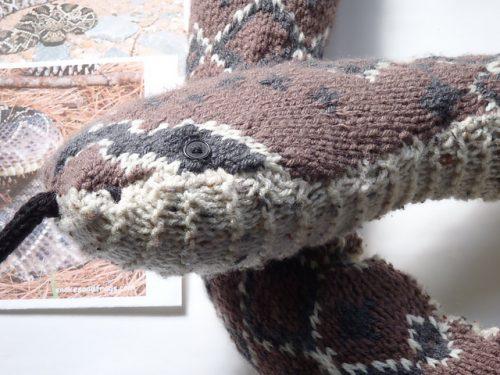 Rattlesnake Close-up